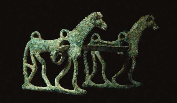 mostra il cavallo icona