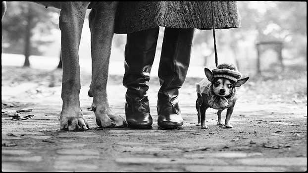 Elliott Erwitt, New York City, USA, 1974. © Elliott Erwitt