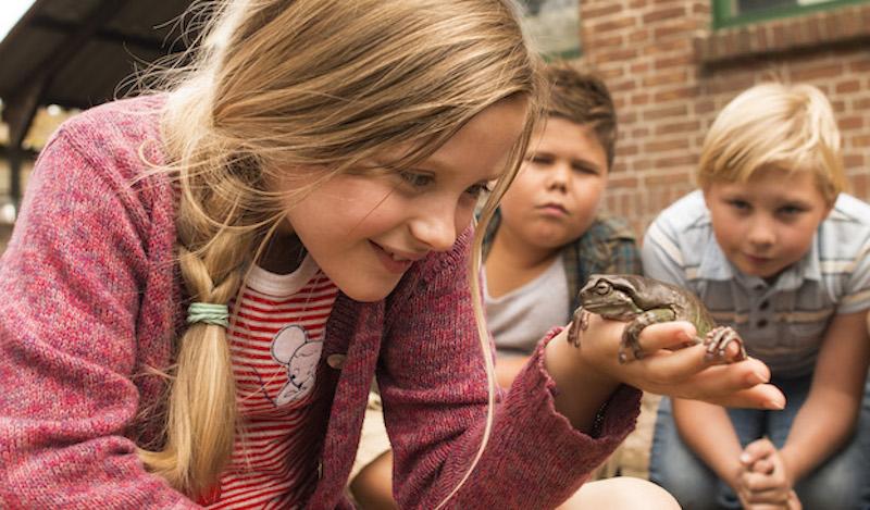 Mr Frog su Sky FAMILY FILM FESTIVAL